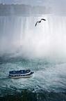 2012 08 NiagaraChutes 9894